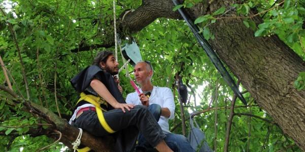 Performance di Sislej Xhafa, tra i rami di un albero un barbiere riceve i suoi clienti