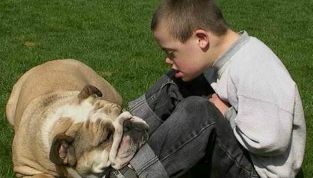 Pet-Therapy. Una cura per l'Anima