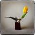 Ikebana: i fiori dell'anima