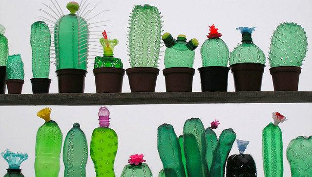 plastic-bottle-sculpture-recycle-art-veronika-richterova-9