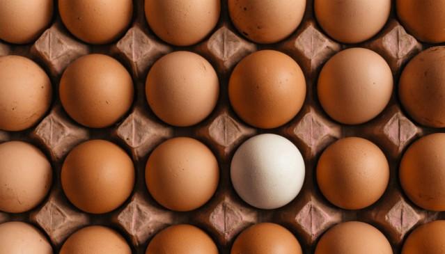 È nato prima il logo o la gallina? Il fenomeno social del conformismo creativo